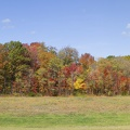 314-9189--9177 Fall Colors Panorama.jpg