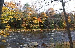 315-2496-2499 Fall Colors by the River.jpg