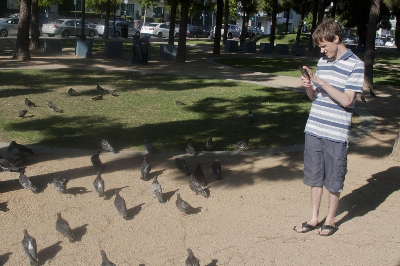 316-4679 Thomas with Pigeons.jpg