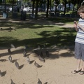 316-4679 Thomas with Pigeons
