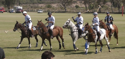 316-6236 San Diego Polo Club