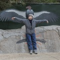 402-4706 Safari Park - Kate vs California Condor Wingspan
