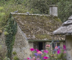 404-1726 Cotswolds - Bibury and Arlington Row
