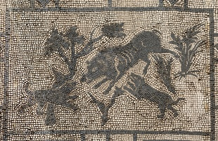 407-4134 IT - Pompeii - Mosaic in Entryway of Villa - Dogs and Wild Boar - VIII.3.8