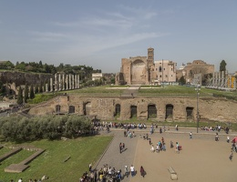407-5911 IT - Roma - Temple of Venus and Rome