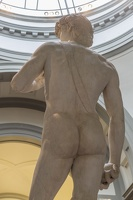 408-2461 IT - Firenze - Galleria dell'Accademia - Michelangelo - David 1501-04