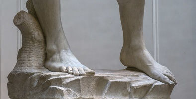 408-2482 IT - Firenze - Galleria dell'Accademia - Michelangelo - David (detail) 1501-04
