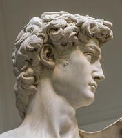408-2487 IT - Firenze - Galleria dell'Accademia - Michelangelo - David (detail) 1501-04