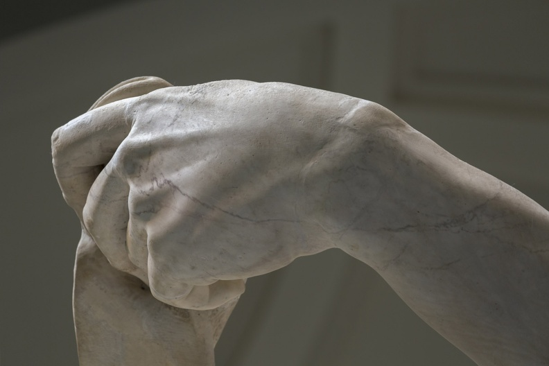 408-2573 IT - Firenze - Galleria dell'Accademia - Michelangelo - David 1501-04 (detail).jpg
