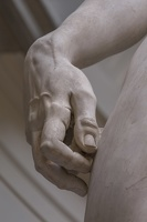 408-2551 IT - Firenze - Galleria dell'Accademia - Michelangelo - David 1501-04 (detail)