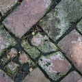 106_2595_Marysville_Koester_Brick_Path.jpg