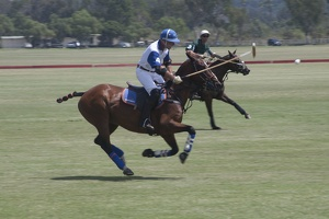 316-6015 San Diego Polo Club