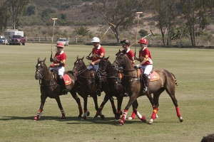 316-6234 San Diego Polo Club